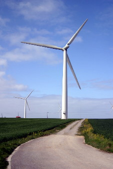 Wind Energy Facts. Does wind energy represent the road ahead to a sustainable, flourishing world?
